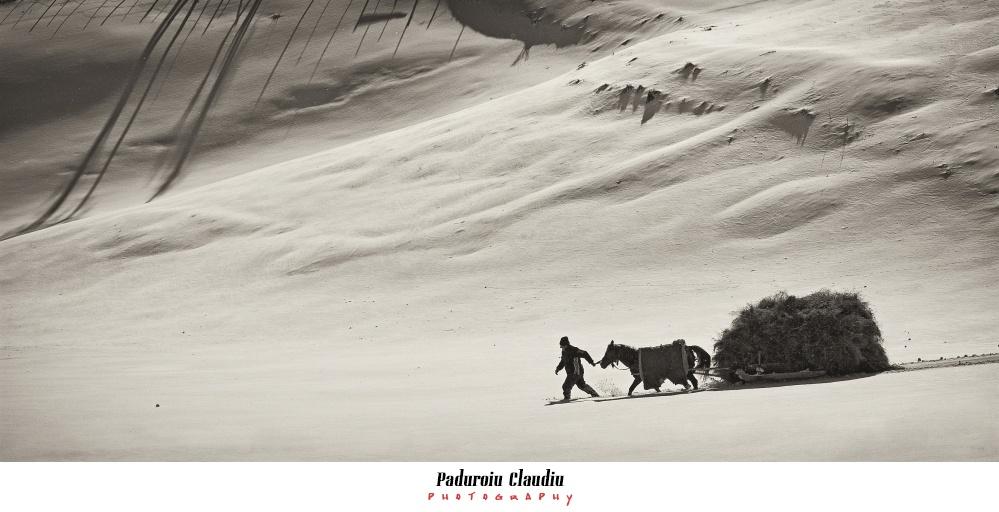 Peisaje - Paduroiu Claudiu Fotograf Brasov025