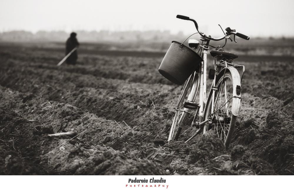 Peisaje - Paduroiu Claudiu Fotograf Brasov028