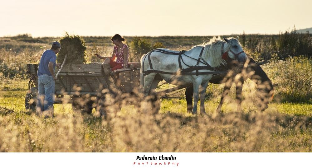 Peisaje - Paduroiu Claudiu Fotograf Brasov029