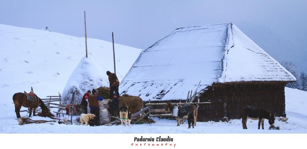 Peisaje - Paduroiu Claudiu Fotograf Brasov037
