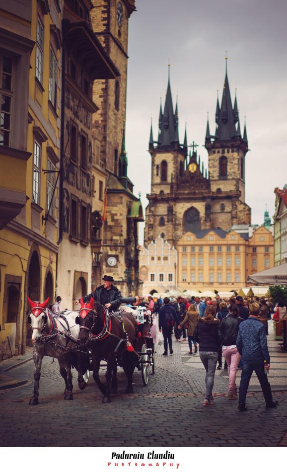 Peisaje - Paduroiu Claudiu Prague 1