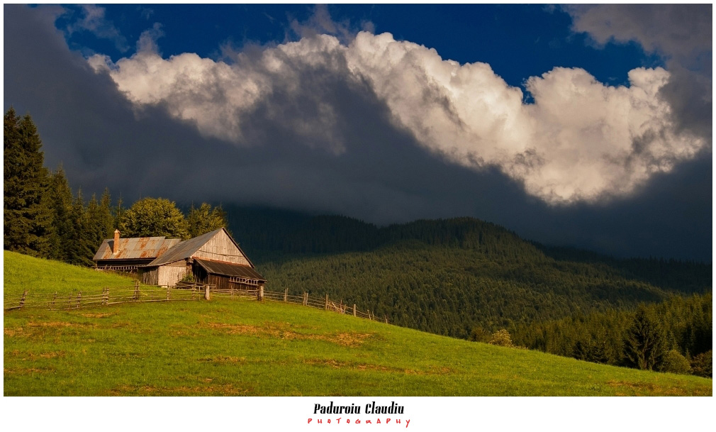 Peisaje - Paduroiu Claudiu049