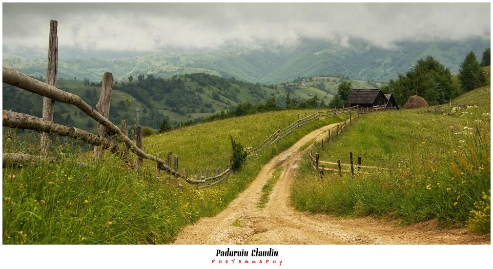 Peisaje - Paduroiu Claudiu050
