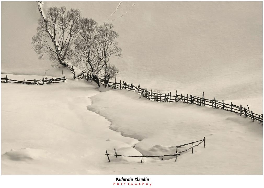 Peisaje - Paduroiu Claudiu053
