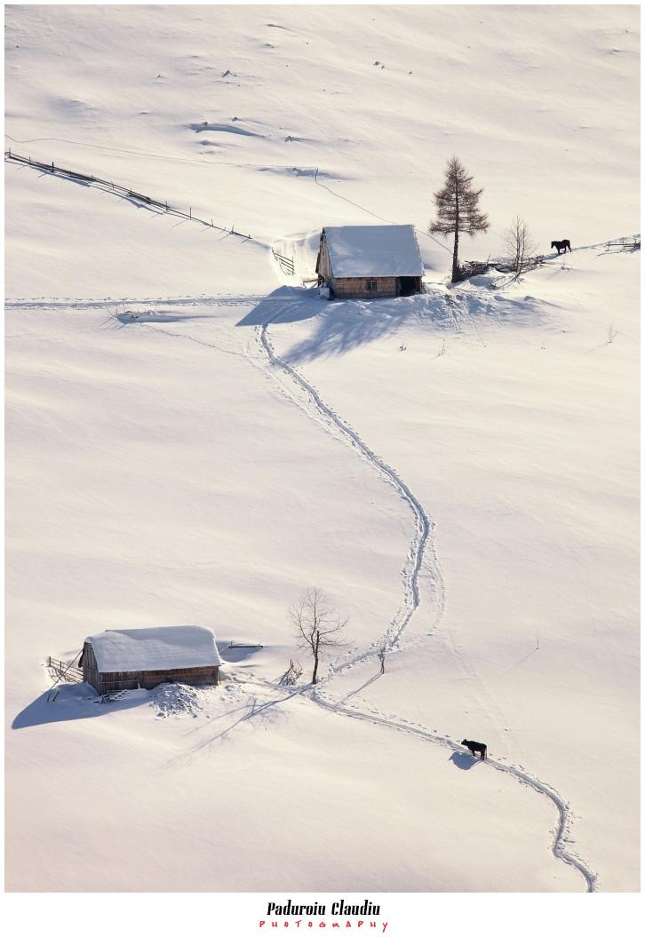 Peisaje - Paduroiu Claudiu058