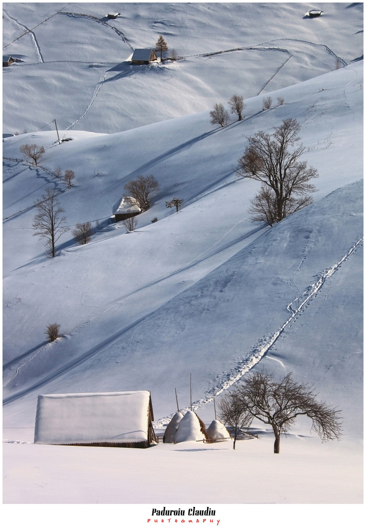 Peisaje - Paduroiu Claudiu059