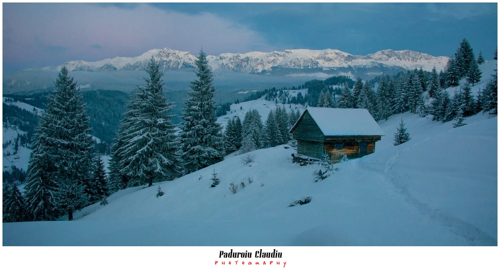 Peisaje - Paduroiu Claudiu064