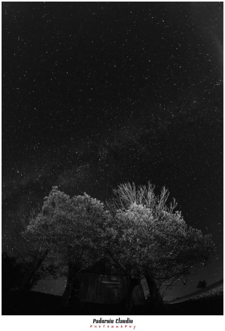 Peisaje - Paduroiu Claudiu069
