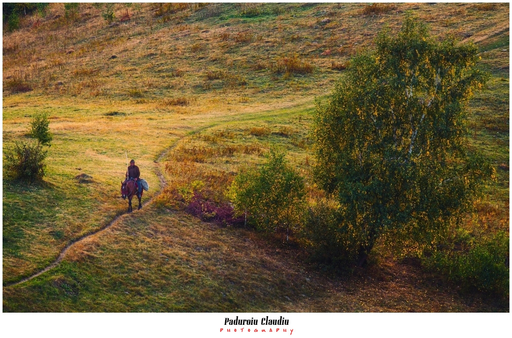 Peisaje - Paduroiu Claudiu090