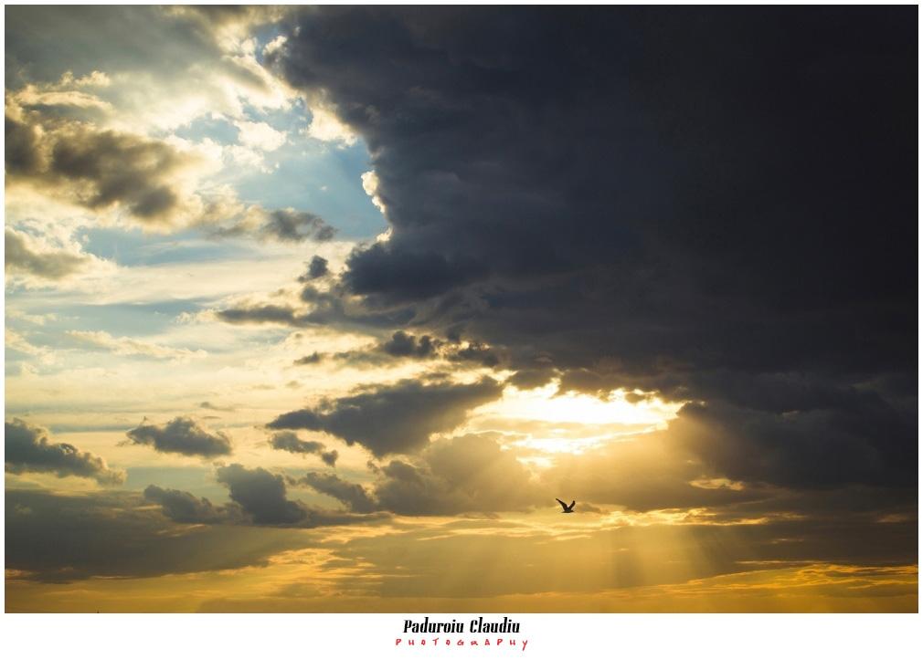 Peisaje - Paduroiu Claudiu094