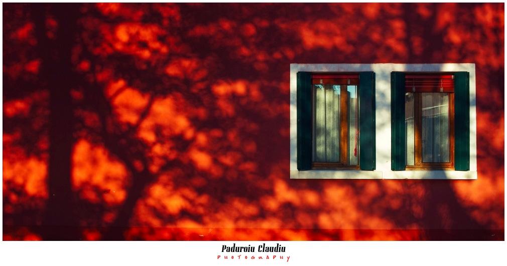 Peisaje - Paduroiu Claudiu141